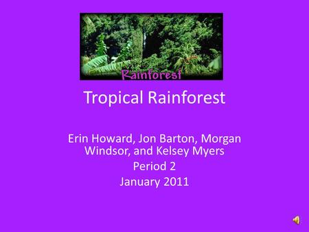 Tropical Rainforest Erin Howard, Jon Barton, Morgan Windsor, and Kelsey Myers Period 2 January 2011.