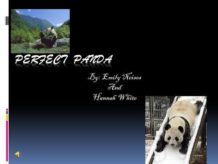 By: Emily Neises And Hannah White Our Base animal  Our base animal is a panda.  Pandas are animals with white and black fur.  Pandas are endangered.