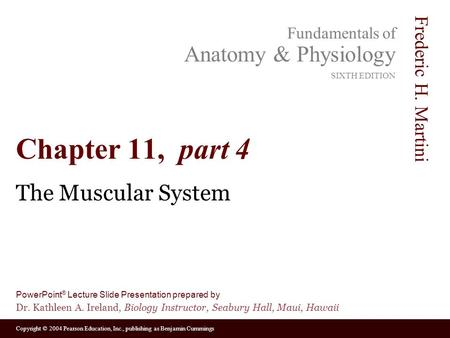 Chapter 11, part 4 The Muscular System.