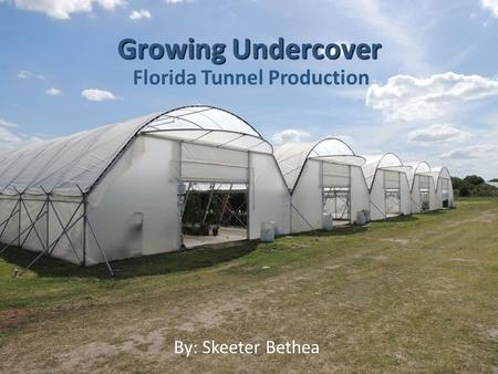 Florida Tunnel Production