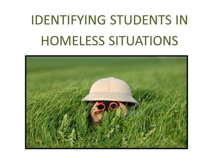 IDENTIFYING STUDENTS IN HOMELESS SITUATIONS. Key Provisions Every LEA must designate an appropriate staff person as a local homeless education liaison.