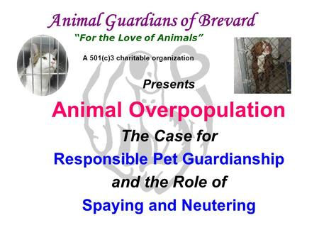 "Animal Guardians of Brevard ""For the Love of Animals"" A 501(c)3 charitable organization Presents Animal Overpopulation The Case for Responsible Pet Guardianship."