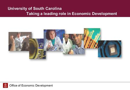 Office of Economic Development University of South Carolina Taking a leading role in Economic Development.