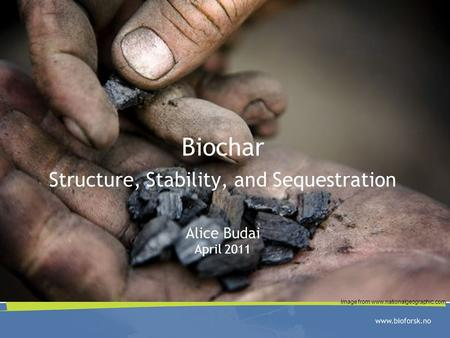 Biochar Structure, Stability, and Sequestration Alice Budai April 2011 Image from www.nationalgeographic.com.