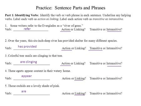 Practice: Sentence Parts and Phrases Part 1: Identifying Verbs: Identify the verb or verb phrase in each sentence. Underline any helping verbs. Label each.