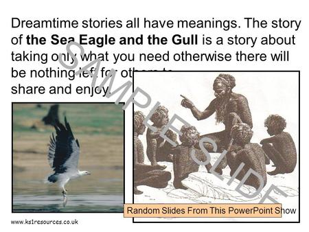 Www.ks1resources.co.uk Dreamtime stories all have meanings. The story of the Sea Eagle and the Gull is a story about taking only what you need otherwise.