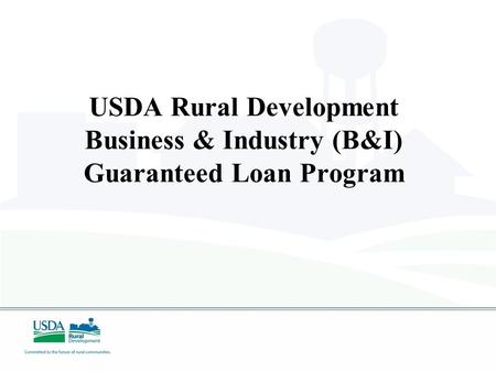 USDA Rural Development Business & Industry (B&I) Guaranteed Loan Program.