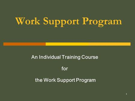 1 Work Support Program An Individual Training Course for the Work Support Program.