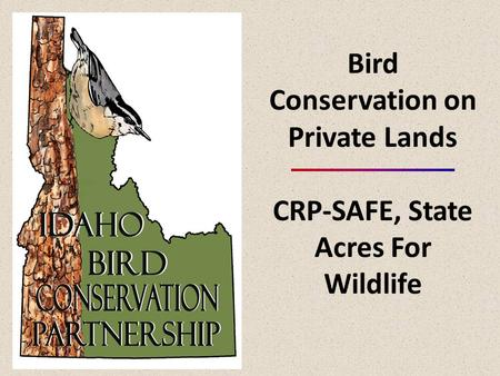 Bird Conservation on Private Lands CRP-SAFE, State Acres For Wildlife.