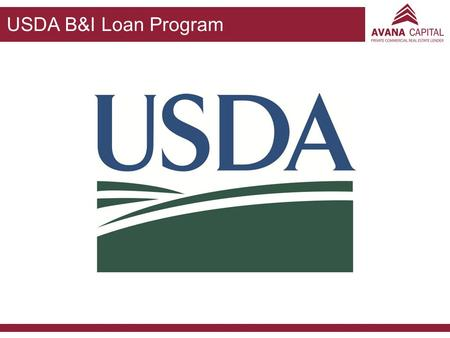 USDA B&I Loan Program.