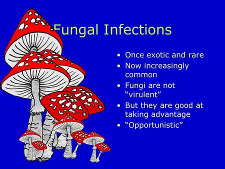 "Fungal Infections Once exotic and rare Now increasingly common Fungi are not ""virulent"" But they are good at taking advantage ""Opportunistic"""