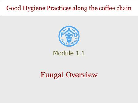 Good Hygiene Practices along the coffee chain Fungal Overview Module 1.1.