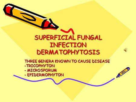 SUPERFICIAL FUNGAL INFECTION DERMATOPHYTOSIS THREE GENERA KNOWN TO CAUSE DISEASE -TRICOPHYTON - MICROSPORUM - EPIDERMOPHYTON.