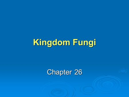 Kingdom Fungi Chapter 26.