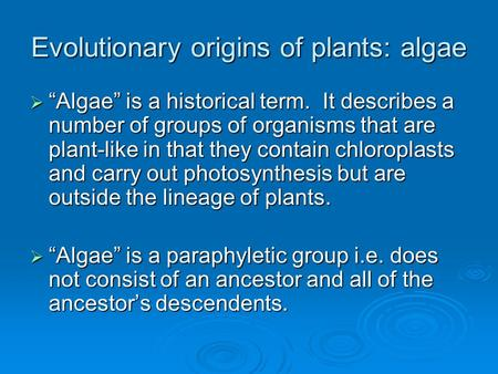 Evolutionary origins of plants: algae