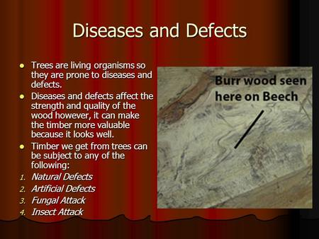 Diseases and Defects Trees are living organisms so they are prone to diseases and defects. Diseases and defects affect the strength and quality of the.