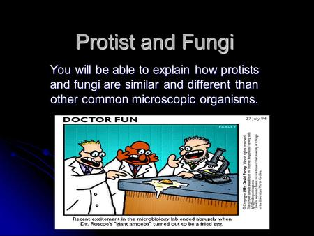 Protist and Fungi You will be able to explain how protists and fungi are similar and different than other common microscopic organisms.