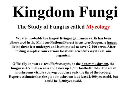 Kingdom Fungi The Study of Fungi is called Mycology What is probably the largest living organism on earth has been discovered in the Malheur National Forest.