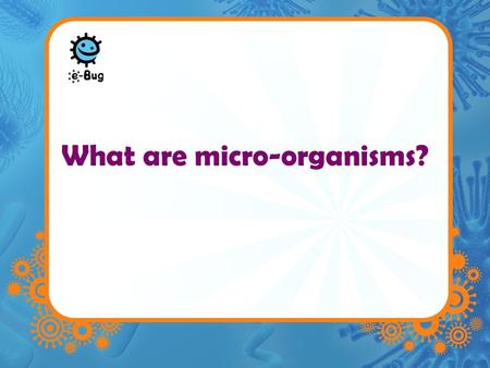What are micro-organisms?. Microbes –Microbes are single celled organisms –Too small to be seen with the naked eye –They are found practically EVERYWHERE.