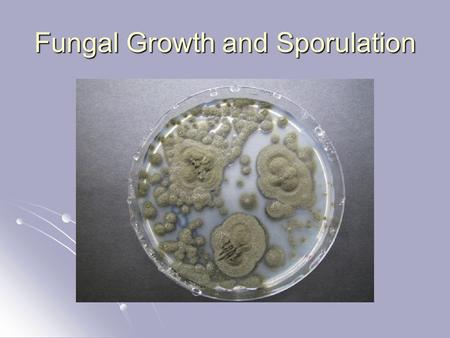 Fungal Growth and Sporulation. G. T. Cole. 1986. Microbiol. Rev. 50: 95-132.