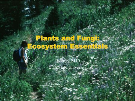 <strong>Plants</strong> and Fungi: Ecosystem Essentials Biology 2410 Utah State University.