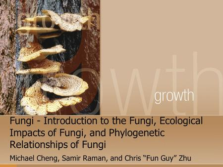 "Fungi - Introduction to the Fungi, Ecological Impacts of Fungi, and Phylogenetic Relationships of Fungi Michael Cheng, Samir Raman, and Chris ""Fun Guy"""