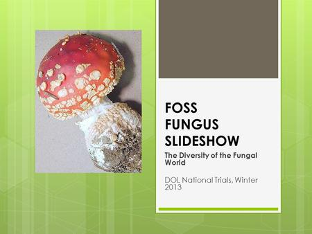 FOSS FUNGUS SLIDESHOW The Diversity of the Fungal World DOL National Trials, Winter 2013.