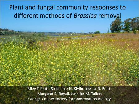 Plant and fungal community responses to different methods of Brassica removal Riley T. Pratt, Stephanie N. Kivlin, Jessica D. Pratt, Margaret B. Royall,