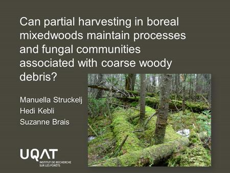 Can partial harvesting in boreal mixedwoods maintain processes and fungal communities associated with coarse woody debris? Manuella Struckelj Hedi Kebli.