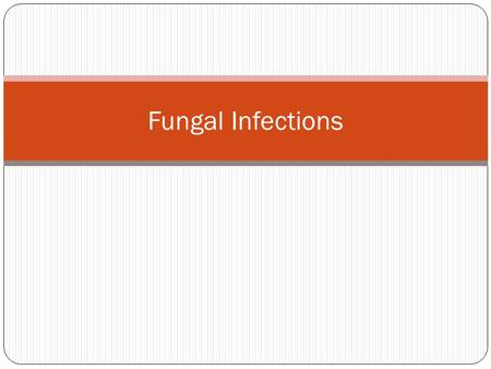 Fungal Infections. Histoplasmosis Systemic infection by Primary pathogen Causative agent: Histoplasmosis capsulatum Most common true pathogen Typically.
