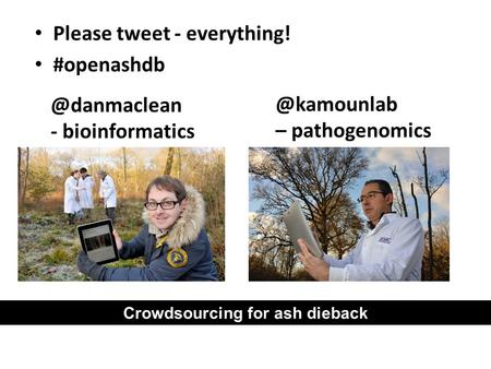 Please tweet - everything! - – pathogenomics Crowdsourcing for ash dieback.