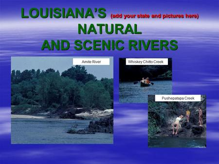 LOUISIANA'S (add your state and pictures here) NATURAL AND SCENIC RIVERS Amite RiverWhiskey Chitto Creek Pushepatapa Creek.