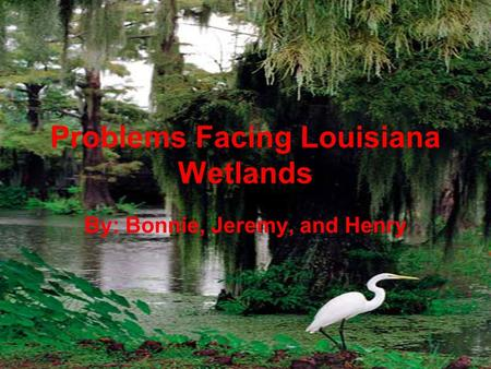 Problems Facing Louisiana Wetlands By: Bonnie, Jeremy, and Henry.
