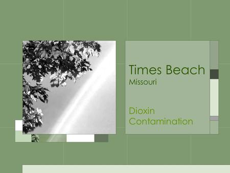 Times Beach Missouri Dioxin Contamination. Brief Outline Times Beach is a small town in St. Louis County, Missouri Population ~ 1500 Problems began 1970;