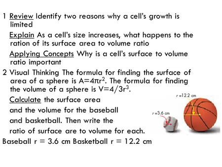 1 Review Identify two reasons why a cell's growth is  limited