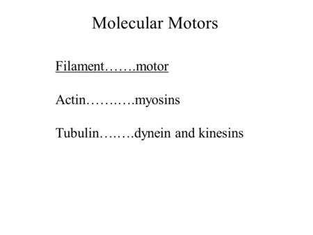 Molecular Motors Filament…….motor Actin…….….myosins Tubulin….….dynein and kinesins.
