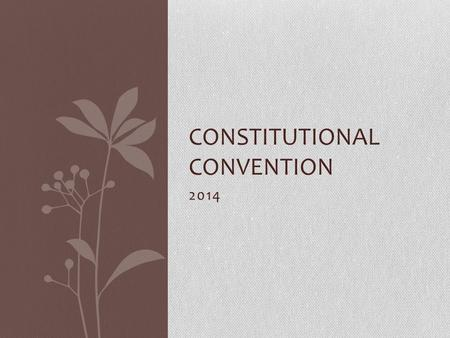 2014 CONSTITUTIONAL CONVENTION Setting up speeches Write each speech on a separate sheet of paper. Put your delegate name and state as your heading.