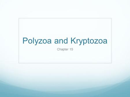 Polyzoa and Kryptozoa Chapter 15.