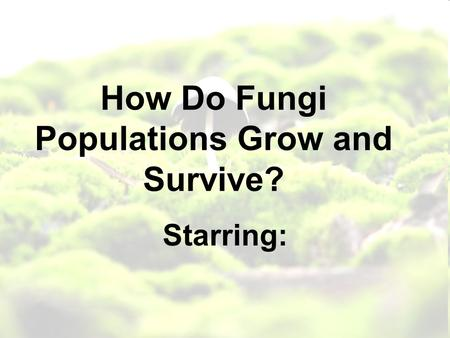 How Do Fungi Populations Grow and Survive? Starring: