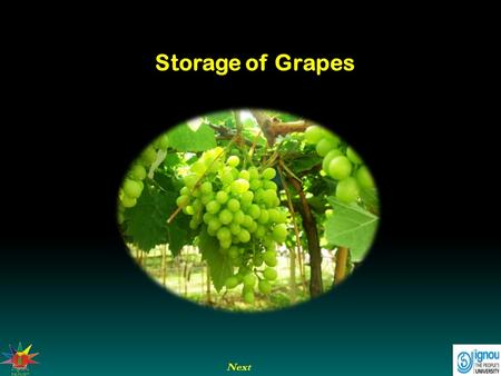Next Storage of Grapes. Next End Previous Storage of Grapes Introduction Grapes are cultivated in many countries of the world. India produces only about.