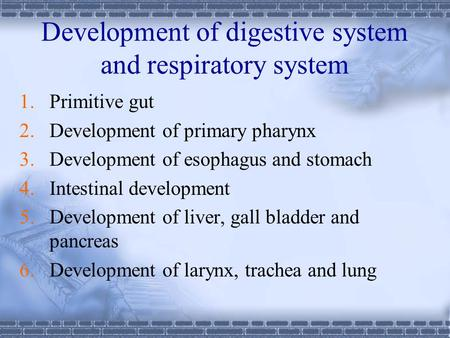 Development of digestive system and respiratory system