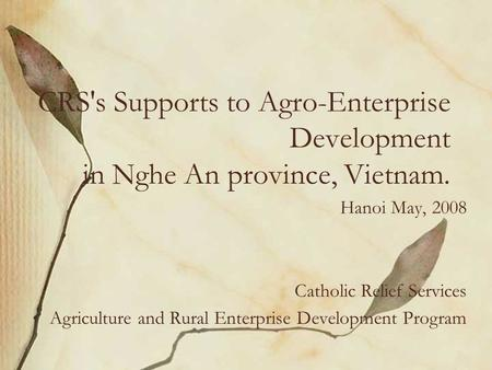 CRS's Supports to Agro-Enterprise Development in Nghe An province, Vietnam. Hanoi May, 2008 Catholic Relief Services Agriculture and Rural Enterprise Development.
