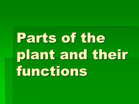 Parts of the plant and their functions. Importance of plants  Without plants life on earth would not exist.