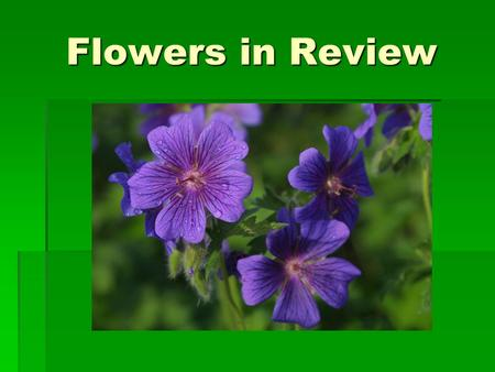 Flowers in Review. Basic Flower A flower described:  A characteristic feature of the angiosperms is the grouping of sexually reproductive structures.