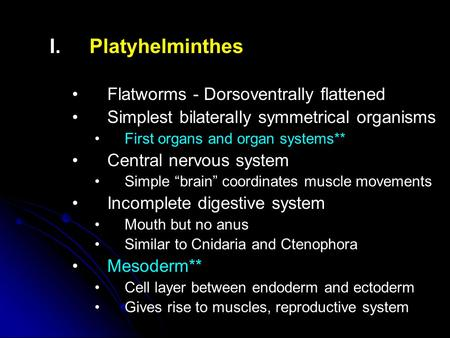 I. I.Platyhelminthes Flatworms - Dorsoventrally flattened Simplest bilaterally symmetrical organisms First organs and organ systems** Central nervous system.