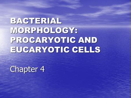 BACTERIAL MORPHOLOGY: PROCARYOTIC AND EUCARYOTIC CELLS Chapter 4.