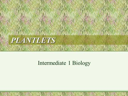 PLANTLETS Intermediate 1 Biology. INTRODUCTION A plantlet is a tiny version of a plant still attached somewhere to its parent plant The plantlets obtain.
