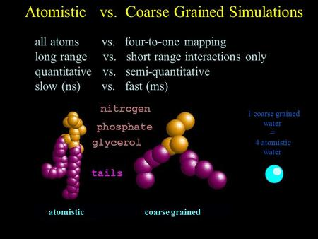 Atomistic vs. Coarse Grained Simulations all atoms vs. four-to-one mapping long range vs. short range interactions only quantitative vs. semi-quantitative.