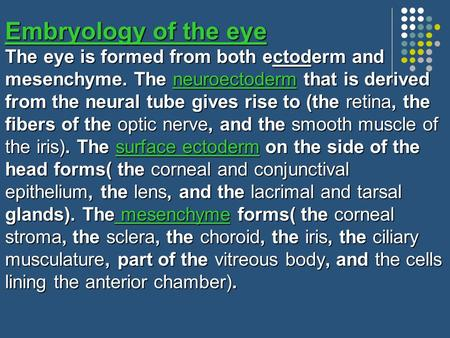Embryology of the eye The eye is formed from both ectoderm and mesenchyme. The neuroectoderm that is derived from the neural tube gives rise to (the retina,