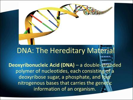 DNA: The Hereditary Material Deoxyribonucleic Acid (DNA) – a double-stranded polymer of nucleotides, each consisting of a deoxyribose sugar, a phosphate,